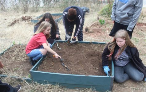 Science classes aid in garden cleanup