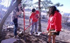 Green Club gets students involved at school