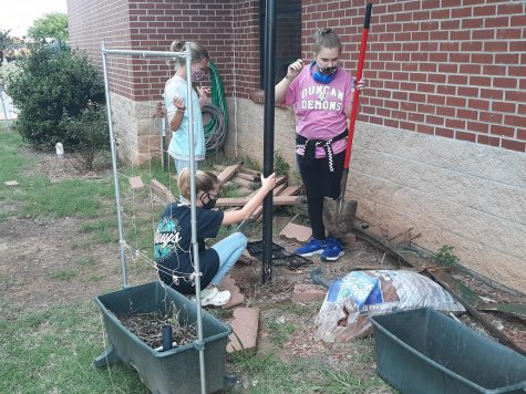 Sixth-grade students participate in the garden clean up with the Green Club.
